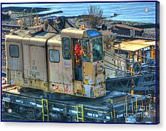 Bn 975413 Acrylic Print by Chris Anderson
