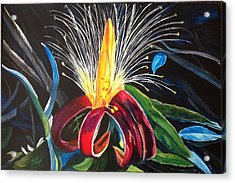Acrylic Print featuring the painting Boab Flower by Renate Voigt