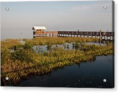 Boardwalk At South Padre Island Birding Acrylic Print by Larry Ditto