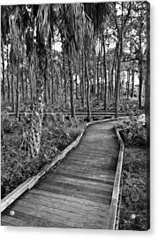 Boardwalk In Black And White 2 Acrylic Print by K Simmons Luna