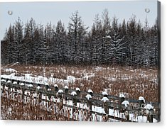 Acrylic Print featuring the photograph Boardwalk Series No1 by Bianca Nadeau