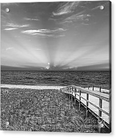Boardwalk To The Sea Acrylic Print by Michelle Wiarda