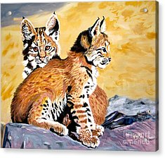 Acrylic Print featuring the painting Bob Kittens by Phyllis Kaltenbach