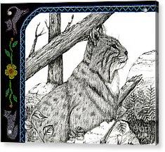 Bobcats Lost Tail Acrylic Print by Christine Matha