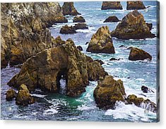 Bodega Head Acrylic Print by Garry Gay