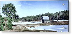 Acrylic Print featuring the photograph Bog In Winter by Constantine Gregory