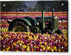 Bogged Down By Color Acrylic Print by Wes and Dotty Weber