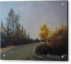Bogus Basin Road Acrylic Print by Terri Messinger