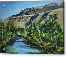 Boise River From Barber Park Bridge Acrylic Print