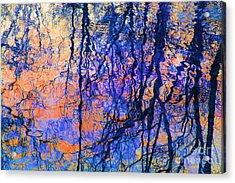 Bold Tree Reflections Acrylic Print