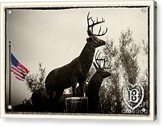 Boldt Castle Deer Acrylic Print by Tony Cooper