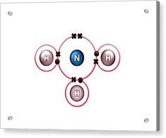 Bond Formation In Ammonia Molecule Acrylic Print
