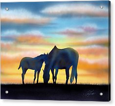 Bonding At Dusk - 1 Acrylic Print