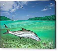 Bonefish Flat Acrylic Print