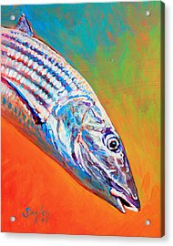 Bonefish Portrait Acrylic Print by Savlen Art