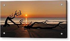 Bones Beach Sunrise Acrylic Print by Debra and Dave Vanderlaan