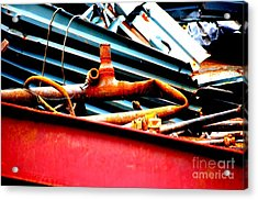 Acrylic Print featuring the photograph Bones by Christiane Hellner-OBrien