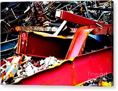 Acrylic Print featuring the photograph Bones IIi by Christiane Hellner-OBrien