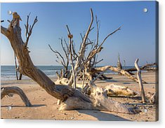 Boneyard Beach Acrylic Print by Patricia Schaefer