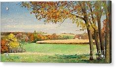 Bonjour Lands In Apple River Jo Daviess County Acrylic Print