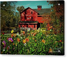 Bonneyville Grist Mill From Dahlia Garden Acrylic Print by Rory Cubel