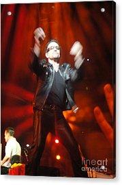 Bono Acrylic Print by Tara Nightingale