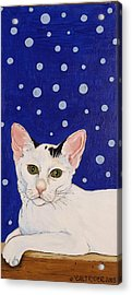 Acrylic Print featuring the painting Booboo by Alison Caltrider