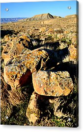 Bookcliffs 138 Acrylic Print by Ray Mathis