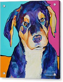Boone Acrylic Print by Pat Saunders-White