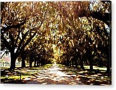 Boone Plantation Acrylic Print