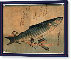 Bora Zu, Striped Mullet Bora. Between 1833 And 1836 Acrylic Print