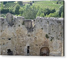 Acrylic Print featuring the photograph Bordeaux Castle Ruins With Vineyard by HEVi FineArt