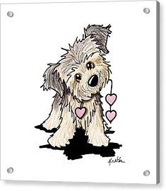 Border Terrier Heart Strings Acrylic Print by Kim Niles