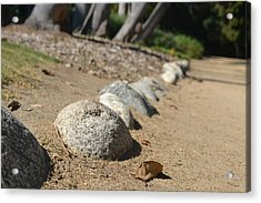 Bordered Pathway Acrylic Print by Kiros Berhane