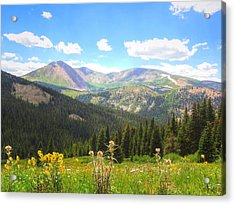 Boreas Pass Summer Acrylic Print by Lanita Williams