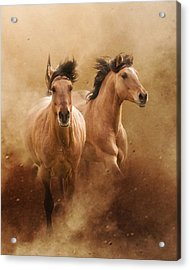 Born From Dust Acrylic Print by Ron  McGinnis