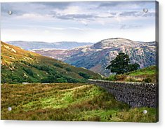 Acrylic Print featuring the photograph Borrowdale Valley In The Lake District by Jane McIlroy