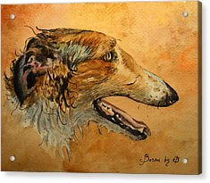 Borzoi Dog Acrylic Print by Juan  Bosco