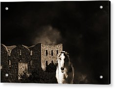 Borzoi Wolf Hound Hunting At Night Acrylic Print by Christian Lagereek