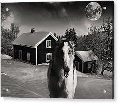 Borzoi Wolf Hound On A Midnight Hunt Acrylic Print by Christian Lagereek