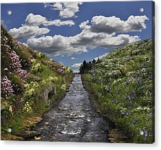 Boscastle Dream Acrylic Print