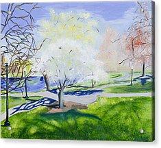 Boston Public Garden Acrylic Print by Carmela Cattuti