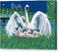 Boston Public Garden Swan Family Acrylic Print