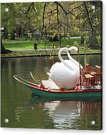Boston Swan Boats Acrylic Print by Barbara McDevitt