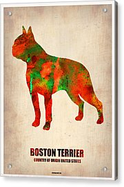 Boston Terrier Poster Acrylic Print