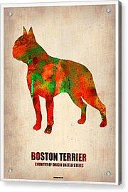 Boston Terrier Poster Acrylic Print by Naxart Studio