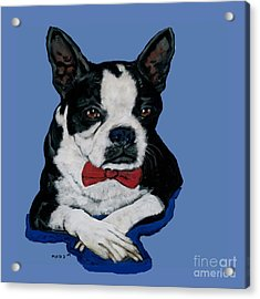 Boston Terrier With A Bowtie Acrylic Print