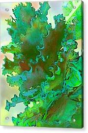 Botanica Fantastica 3 Acrylic Print by ARTography by Pamela Smale Williams