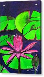 Botanical Lotus 1 Acrylic Print