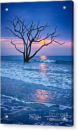 Botany Bay Sunrise 2 Acrylic Print by Carrie Cranwill